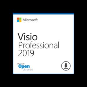 MS Visio Professional 2019 OL